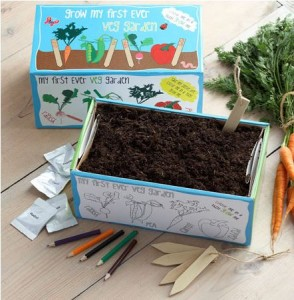 first ever vegetable garden
