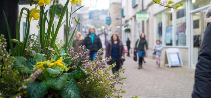 wainwrights-yard-march16-flowers